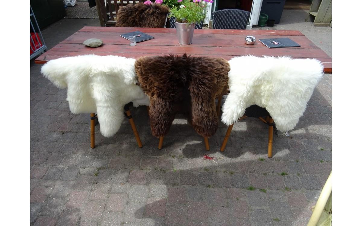 Je café of restaurant verzachten met Texelse schapenvachten